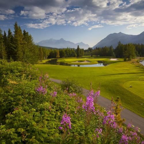 SAECO 2020 Annual Golf Tournament
